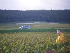 Arlaud-Vendangeur-in-Bourgogne-Roncevie-looking-towards-Chambertin