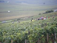 Day 6 - Arlaud vendangeurs exiting Petit Monts 3