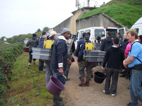 Day 6 - Arlaud vendangeurs exiting Petit Monts 5