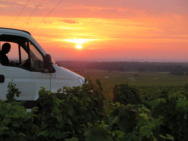 Rene in his camion at Clos St Denis, sun now up