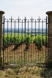 Volnay Les Caillerets