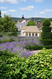 The view to the church of Notre Dame in Beaune