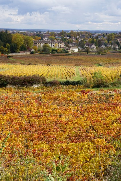 Southern Beaune Grèves