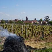 A Romanée St.Vivant pyre...