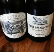 weekend wines – week 20 – pinot from british columbia…?