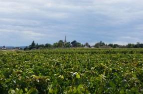 Over Meursault Santenots...