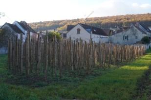 Clos des Grandes Vignes - Nuits