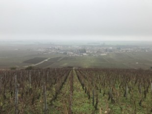 Vosne from Aux Champs Perdrix