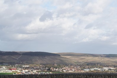Towards Chablis and its Grand Crus from Les Lys