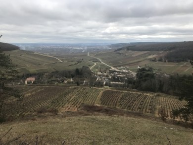 The view from above Pernand at lunchtime - Charlemagne to left...