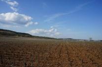 Over Meursault-Charmes...