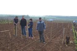 Drouhin-Laroze - team at work...