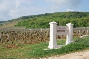 The last vines before Chambertin - the vines of Duroché