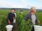 Le-Japonnais-Herve-Arlaud-en-Morey-Chardonnay
