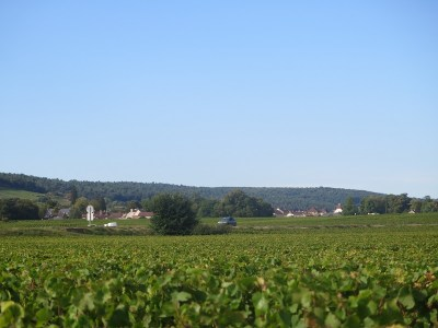 Towards Gevrey from Roncevie late p.m. 17.09