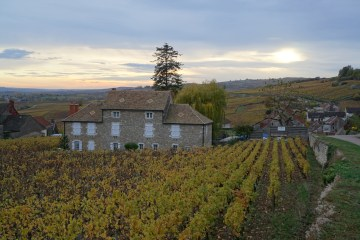 Last light over Santenay Le Haut