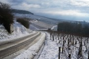 Bougros to the right, Vadésir-Grenouilles in front, Les Clos in the distance.