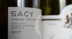 Sacy - Côteaux Bourguignone