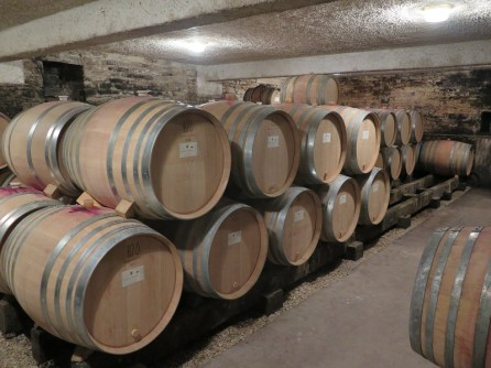 Domaine Cornu-Camus Echevronne Barrel Cellar