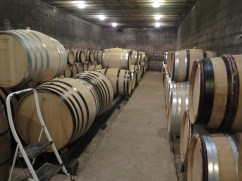 Domaine Philippe Chavy, Puligny barrel cellar