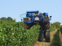 Nuiton Beaunoy Harvesting Machine above Echevronne5