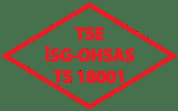 tse-18001