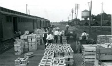 There was a time when farming was the economy - Burlingtonès produce was sold around the world.