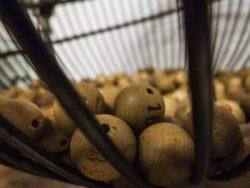 Lottery balls 2