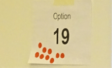 Option 19 short