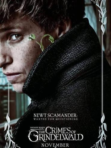 J. K. Rowling está reescrevendo o roteiro de terceiro filme de Animais Fantásticos 33