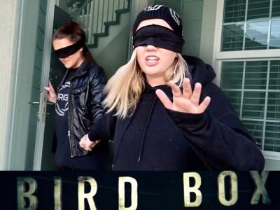 Netflix pede que fãs não se machuquem fazendo desafio inspirado em Bird Box 14