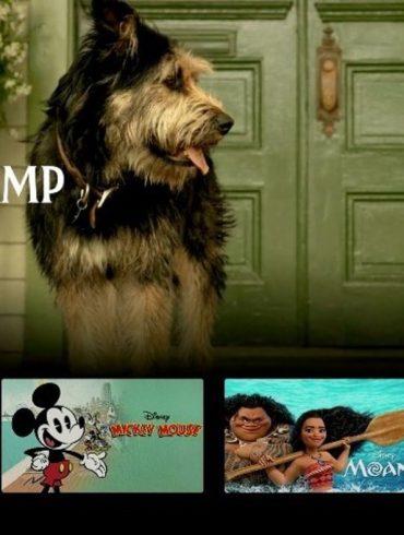 """Conheça """"Pixar em Real Life"""", nova série da Pixar para o Disney +! 20"""
