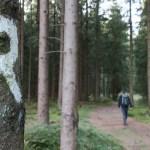 Weitwanderweg rennsteig-wandern-in-thueringen