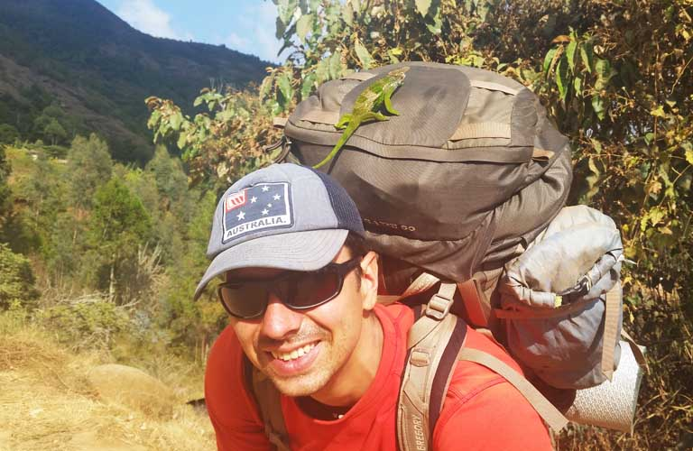 Kameleon Usambara Mountain