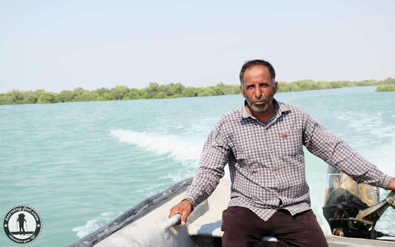 Delfine Queshm Island Mangrove forrest Iran Geopark Qeschm Sehenswürdigkeit Mangrovenwald