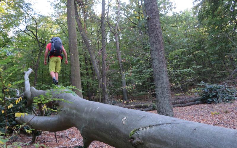 Trekkingrucksack Test burning feet