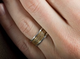 The ring lost and then found again by Hazem Gamal.