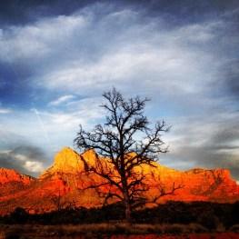 Sunset. Sedona, Arizona.
