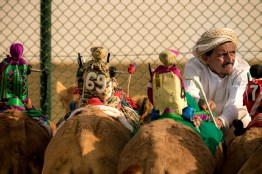 Small robots are now mounted on the camel humps to replace children jockeys.