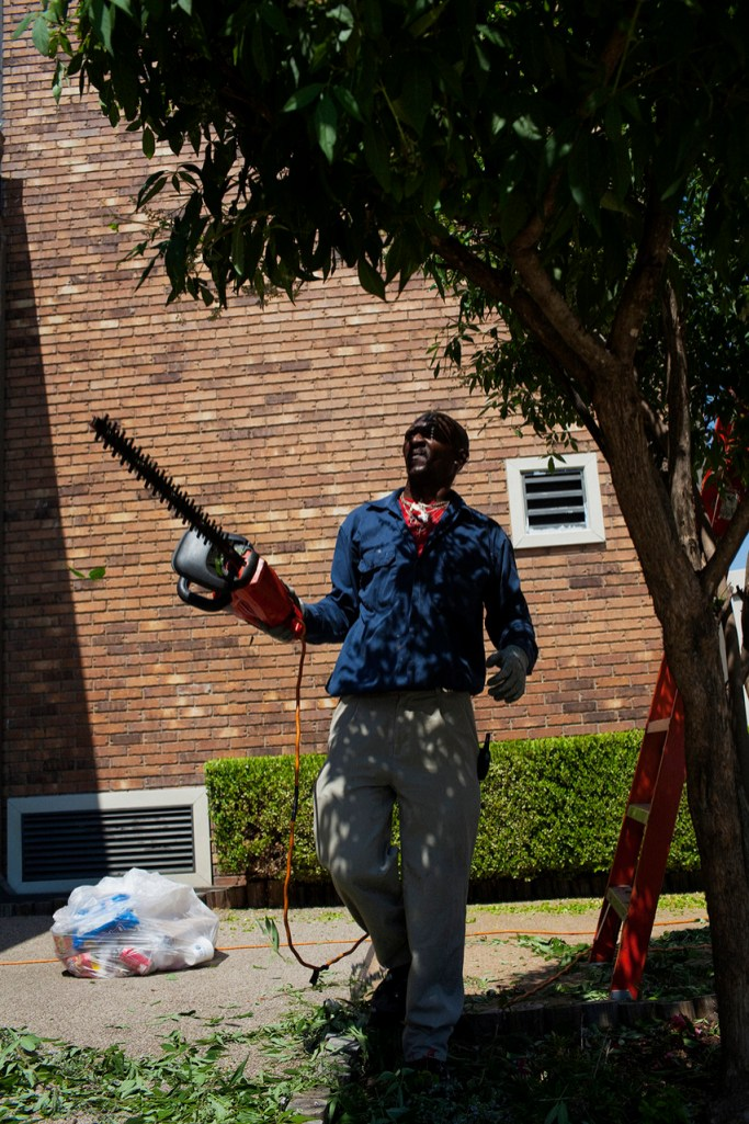A man trimming trees outside of the Best Western Hotel in Greenwood, Mississippi on May 20, 2012.
