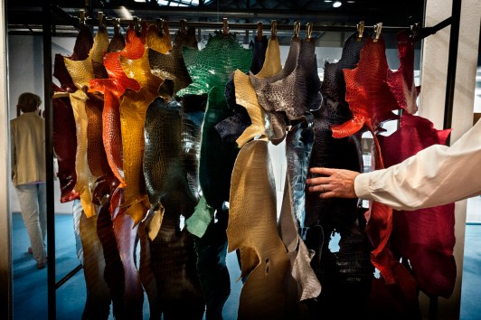 """Italy, Milan in September 2014, caiman skins exposed during the most important showroom in the world, called """"LINEAPELLE."""" Thousands of workers are coming to this event from all over the world."""