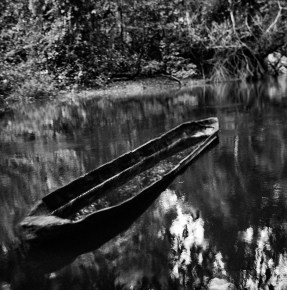 An abandoned canoe near Ngoila, in the Dja Faunal Reserve. Cameroon.