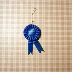 03.Winner