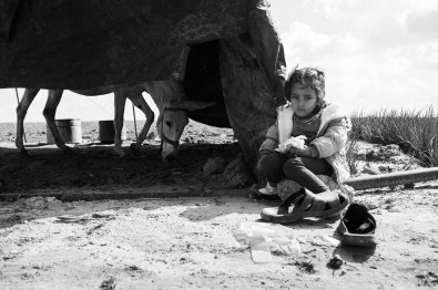 Hala Abu Daqqa is seen eating her lunch in the family's farmland in Khan Younis, southern Gaza, Palestine, on Nov. 3rd 2014. The Abu Daqqa's house was rubbled, the family has been living in a shelter home in an United Nation school in Khan Younis for three months now.
