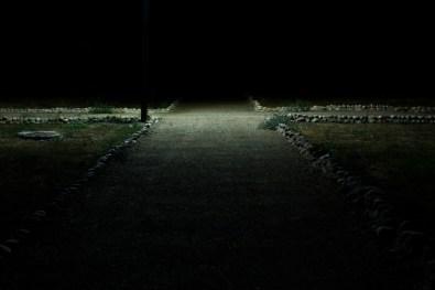 20_Oskar Alvarado_Where Fireflies Unfold