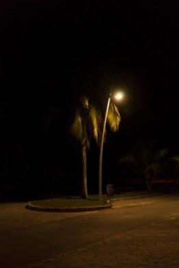 9 - Que oscura esta la noche - eb140947-af26-4c9f-a6f1-7948ecdfd99e