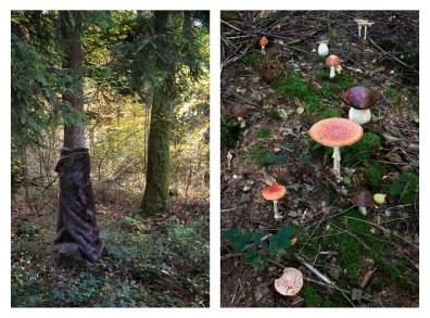 """7 - """"Homage to Meret Oppenheim & poisonous mushrooms"""" - a0790c26-9d97-482b-a0d5-53e499a89491"""