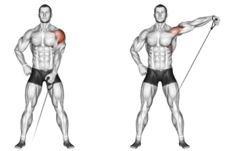 Image result for Dumbbell or Cable Machine Lateral Raise