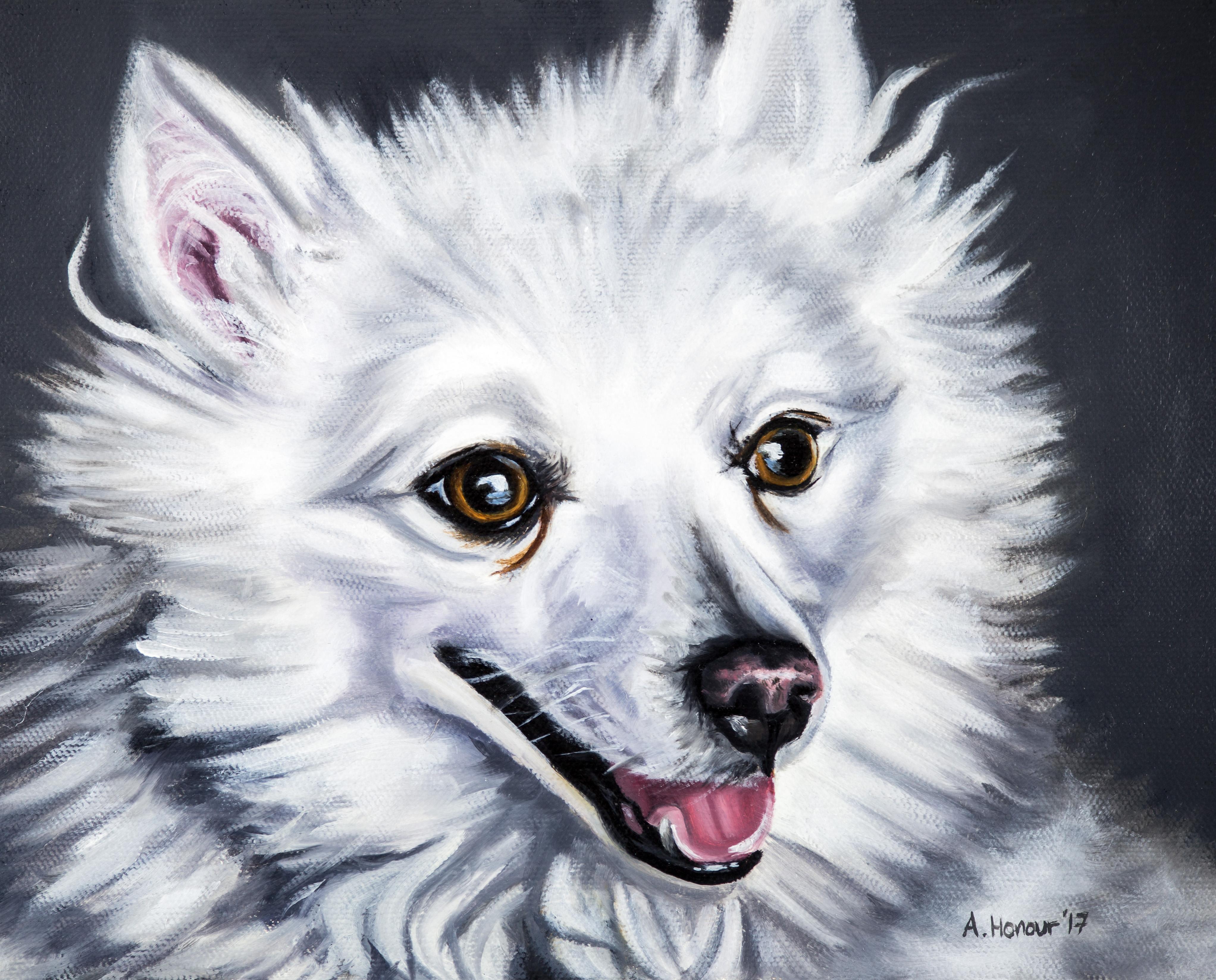 """Completed Dog Portrait Commission """"Trigger"""""""