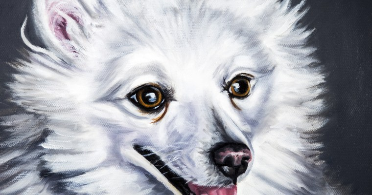 "Completed Dog Portrait Commission ""Trigger"""